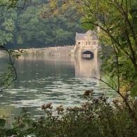 PTFA -Teas at the Lake 6